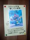 20080729_013