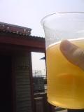 やっぱ、暑い日にはビールo(^-^)o